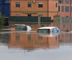 20 milioni di euro stanziati per l'Emergenza .